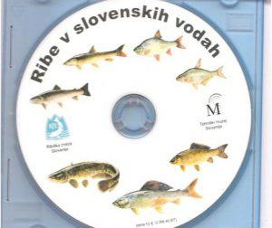 CD Ribe v slovenskih vodah - Fish in Slovenian waters