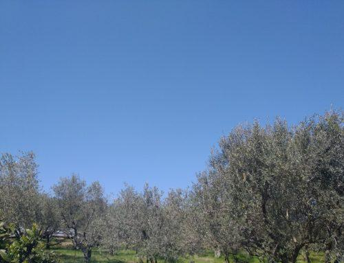 Zbiramo fotografije modrega neba